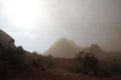 IMG_6966 (otakupun) Tags: storm phoenix desert monsoon dust haboob