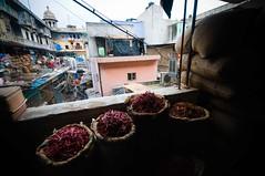 Gadodia_1 (S:P:S) Tags: india delhi spice documentary migrant gadodia
