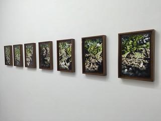Philipp Fröhlich - Galería Juan de Aizpuru