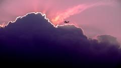 Anglų lietuvių žodynas. Žodis aeroplane reiškia n lėktuvas lietuviškai.
