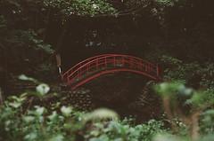 Red Bridge (adam_364) Tags: bridge film nature japan architecture forest tokyo minolta fujicolor