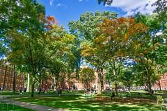 Harvard Yard Early Fall Foliage ((Jessica)) Tags: boston harvard massachusetts newengland fallfoliage pw cambridge trees foliage harvardyard