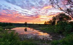 Samyang sunset (Bent Velling) Tags: sarpsborg stfold norge norway norwegen scandinavia landscape water sunset clouds trees serene sky outdoor waterscape hdr mirrorless sonya6000 samyang12mmf2 glomma bentvelling