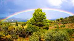 Isola d'Elba - Vista su Portoferraio (RONALD MENTI) Tags: isoladelba toscana italy italia paesaggio landscape