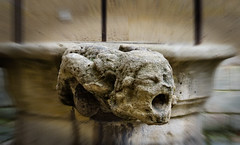 The water well gargoyle (Tigra K) Tags: paris france fr 2016 architdetail carving face gargoyle museum ledefrance