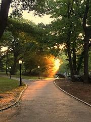 Morning has broken Central park October 6 2016 (dannydalypix) Tags: centralpark centralparknyc nyc