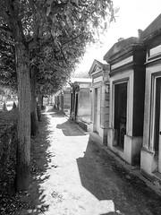 Tombs (Ed Tottenham) Tags: cimetiredumontparnasse boulevardedgarquinet 75014 paris france cemetery montparnasse tombs montparnassecemetery