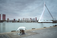 Erasmus Bridge (martijnvdnat) Tags: dutch holland netherlands rotterdam architecture bridge building cable city cityscape construction downtown engineering erasmus erasmusbrug europe harbour kopvanzuid landmark longexposure maas meuse modern monument river skyline structure travel urban water wire zwaan zuidholland nederland