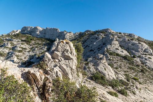 Marseilleveyre depuis le col des Chèvres