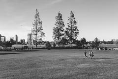 Teens sprinting through grass in Battery Park City (L A Nolan) Tags: 35mm 35mmf2 50mmequiv bw batteryparkcity blackandwhite day fuji fujifilm fujifilmxpro2 fujinon fujinonxf35mmf2 manhattan monochrome newyork newyorkcity newyorknewyork ny nyc outdoors outside running thebigapple xpro2