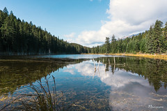 Cabin Lake , AB (Jp-Rabbitz) Tags: alberta lake reflection mirror mirrorless sky nature wilderness travel travelling hiking outdoor sony alpha a6000 canada forest