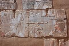 Fortress of Abou Hieroglyphs (gilmorem76) Tags: egypt carvings ancient history hieroglyphs stone egyptology egyptian travel tourism