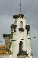 IMG_7811-1 (Andre56154) Tags: spanien spain andalusien andalusia storch stork haus gebude building house kirche church himmel sky wolke cloud nest
