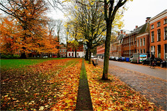 autumn in the city (atsjebosma) Tags: street straat leaves bladeren colourful kleurrijk city stad groningen nederland thenetherlands atsjebosma houses bank bare kaal november 2016 oudeboteringestraat