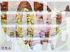 Diversity (soniaadammurray - On and off will try to keep up!) Tags: digitalphotography manipulated experimental abstract collage diversity love quotes robertkennedy cesarchavez catherinepulsifer intolerance ethnicandculteraldiversity nourish strengthen community nation unique workingtowardsabetterworld