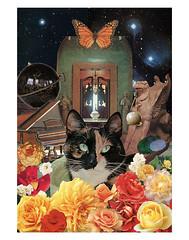 Libra - StarCat (tjager) Tags: zodiac astrology starcat livingferal cat roses scales balance libra collage art analog airsign