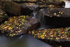 Nature is so beautiful on autumn (emskisee) Tags: stream luvia suomi finland autumn syksy colour colourful september syyskuu satakunta outdoor nature purenature lovenature flickrnature finnishnature finnish