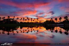 Palm Beach Gardens Sunset Lake and Reflection (Captain Kimo) Tags: aurorahdr2017 captainkimo florida hdrphotography lake palmbeachcounty palmbeachgardens palmtree southflorida