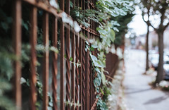 retro (David Go ~) Tags: retro fence zaun old town city street streetphotography sigmaartlense canoneos6d germany tour projekt2016