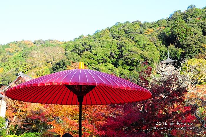 2016永觀堂13.JPG
