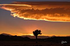 Western Sunset (Riccardo Maria Mantero) Tags: clouds mantero riccardomantero riccardomariamantero desert landscape outdoors sky travel usa