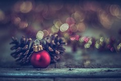 21 days til` Christmas (RoCafe) Tags: stilllife christmas christmasdecoration bokeh selectivefocus vintagelens m42 pentacon50mmf18 nikond600