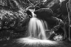 Ro Sesin (miguelangelortega) Tags: ro river cascada cascade nacimiento agua water longexposure lartaexposicn blancoynegro bw rocas stones piedras vegetacin foliage paisaje landscape galicia espaa corua