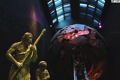 Natural History Museum - London - England (TLMELO) Tags: street inglaterra red england woman black london underground subway metro jubilee mulher games scene victoria preto queen vermelho londres years olympics anos elisabeth 60 mindthegap jogos reinounido victoriastation olimpics rainha london2012 unitedkingdon olímpicos jubileu mygearandme ringexcellence