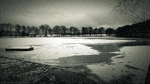 A cold winter day at the lake/Ein kalter Wintertag am See