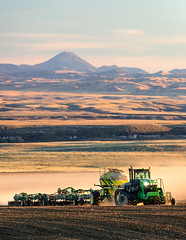 Seeding in the Shadow of Baldy (www.toddklassy.com) Tags: sky tractor dusty face field vertical horizontal work landscape outdoors photography montana driving mt flat action farm wheat farming grain working tracks documentary front farmland hills equipment soil dirt rows farmer organic prairie copyspace agriculture dust chinook planter eastern planting agricultural johndeere drilling farmmachinery plantpropagation greatplains cultivated covershot sowing cultivate implement seeddrill seeding airdrill grower cerealcrop colorimage seeder sown blainecounty bearpawmountains intocamera hinebauch
