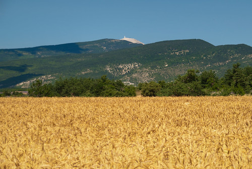 Provence_09_661