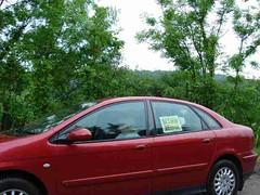 mot-2008-joinville-dsc03935_800x600