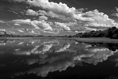 na roça (elzauer) Tags: bw lake saopaulo interior pb
