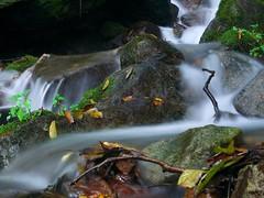 A stream (elminium) Tags: mountain japan stream ravine akagi gunma dmcg1