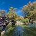 Autumn in Stratford