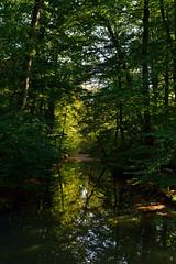 Twickel (l-vandervegt) Tags: holland green nature netherlands landscape nikon groen nederland natuur twente overijssel landschap niederlande twickel delden d3200