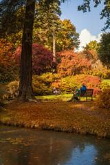 Family Portrait (keety uk) Tags: uk autumn  gardens railway hampshire stuart steam autumnal beaulieu bennett exbury hants exburygardens photokeetynet exburygardensandsteamrailway stuartbennett