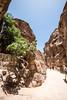 DSC_1578 (vasiliy.ivanoff) Tags: voyage trip travel tour petra jordan journey traveling neareast الأردن البتراء петра иордания ближнийвосток الشرقالاوسط خاورنزدیک המזרחהקרוב