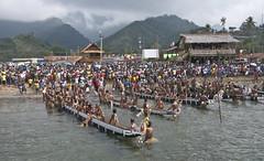War canoes resting (Sven Rudolf Jan) Tags: traditional canoe papuanewguinea alotau kundufestival