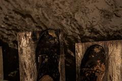 Lama (Felipe Valim Fotografia) Tags: foto vale viagem ribeira valedoribeira ilhacomprida cavernadodiabo cajati caneneia