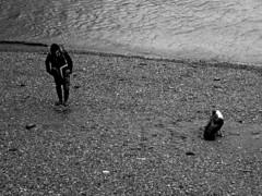 One man and his dog (Draopsnai) Tags: blackandwhite bw dog man beach water monochrome grayscale riverthames