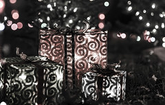Giving season is going to fade (CJ Luck) Tags: christmas light holiday home electric night silver evening dof sweet outdoor sony decoration 85mm depthoffield gifts nightlight happynewyear electriclight sweethome outdoorlight seasonsgreeting sonya99