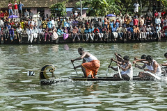 12, Champakara, Kerala (Anoop Negi) Tags: india sports race outdoors photography boat photo crowd racing boating 12 cochin anoop backwaters onam ernakulam dipping negi boatmen gunwale ezee123 champakara