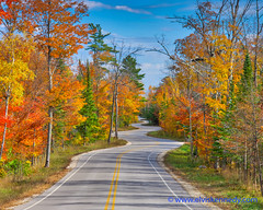 Fall into Winter - Equinox to Solstice #32 - Winding Road (elviskennedy) Tags: 2490 asphalt autumn birch blue bright colors doorcounty drive elm elmarit elvis elviskennedy evergreen fall fallcolors foliage gillsrock gold hdr highdynamicrange highway42 kennedy lakemichigan landscape leaves leica leicasl maple morning oak orange outdoors outside pine red road roadtrip scenic sky sunny tourist tree trees wi windyroad wisconsin wwwelviskennedycom yellow