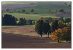 Autumn-landscape near Schwalenberg (Lippe), Germany (hjhoeber2) Tags: autumn herbst autumncolors sonnar sonnart18135 zeiss za teutoburgerwald lippe germany sony a700 autumnlandscape