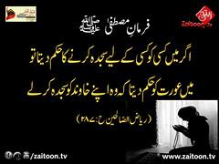 8-10-16) zuyufur rehman copy (zaitoon.tv) Tags: mohammad prophet islamic hadees hadith ahadees islam namaz quran nabi zikar