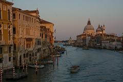 Venecia 10 Septiembre 2016 (carlosjarnes) Tags: venecia canal