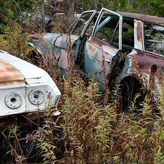 DSC_0097 v2 (collations) Tags: ontario mcleansautowreckers autowreckers wreckers automobiles autos abandoned rockwood derelict junkyards autograveyards carcemeteries