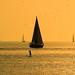 Sailing & Paddling at the golden hour - Tel-Aviv beach