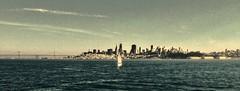 San Francisco (3) (tompa2) Tags: hav vatten bro sanfrancisco höghus